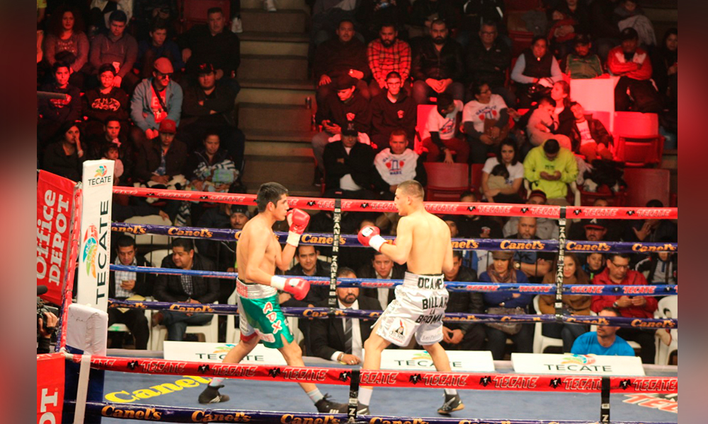 Impulsa Tecate el boxeo con eventos de primer nivel