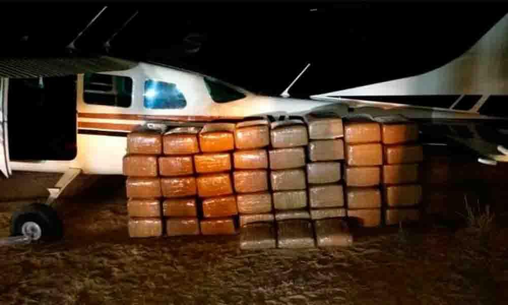 Decomisa Sedena media tonelada droga cerca de San Pedro Mártir