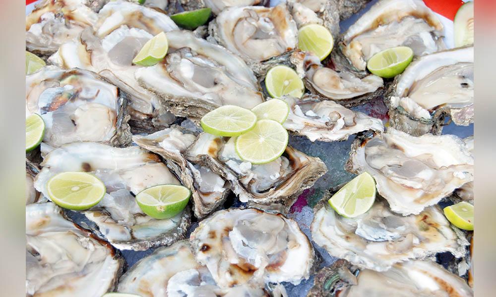 Piden respetar veda de mariscos; son altamente tóxicos