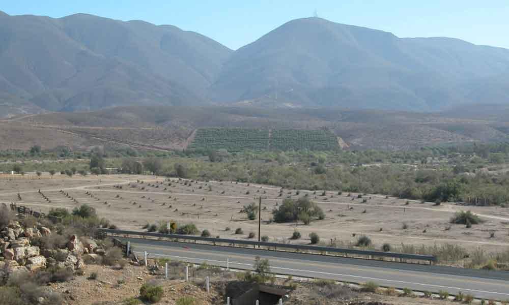 Avanza gestión para pavimentación de carretera alimentadora a Valle de las Palmas: Nereida Fuentes