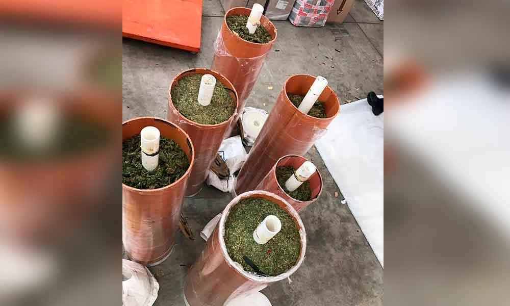 Localizan 275 kilos de marihuana dentro de cilindros en el Aeropuerto de Tijuana