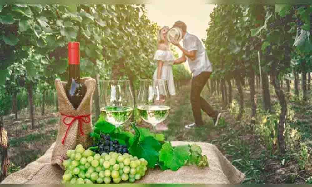 Ruta del Vino entre los favoritos para viajar en el 2017