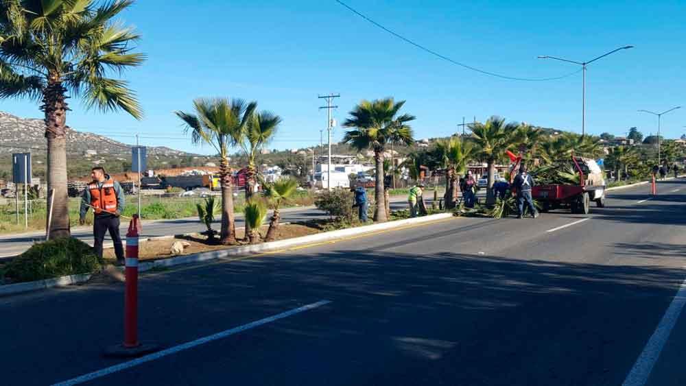 Inician programa de bacheo y alumbrado público en Tecate