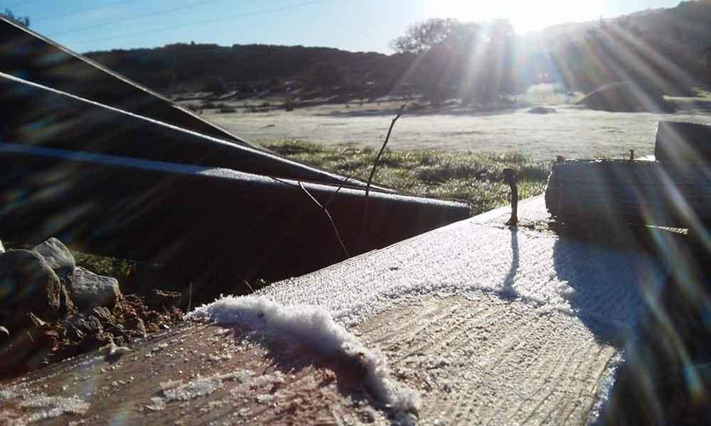 Cae fuerte helada en Tecate; continuarán bajas temperaturas