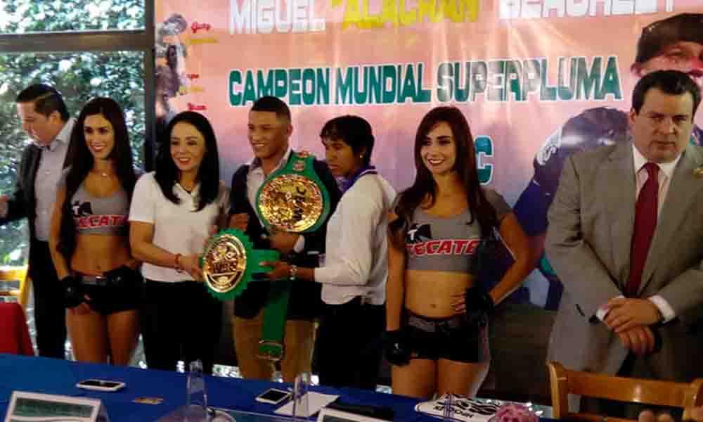 Jackie Nava, lista para regresar al ring
