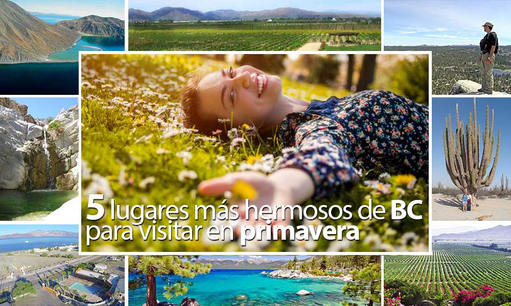 Los 5 lugares más hermosos de Baja California para visitar en primavera