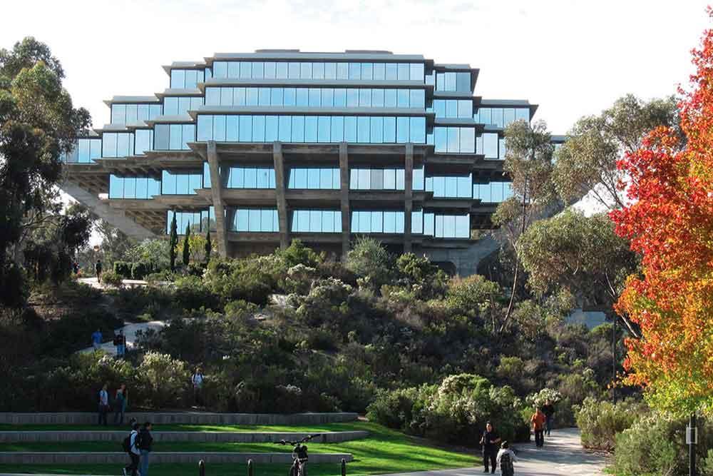 Revelan ocho casos acoso sexual entre empleados de Universidad en San Diego