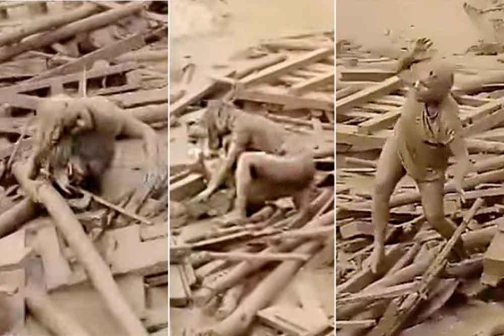 Eva salió del lodo y vio con dolor su casa destruída