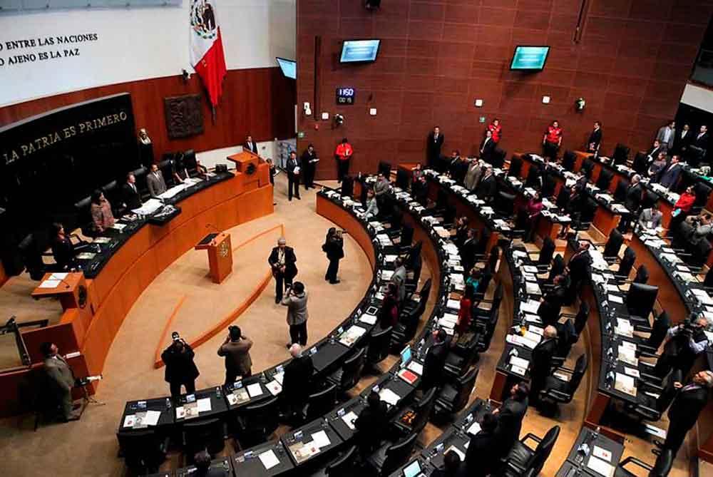 13 senadores ganan 117 mil pesos al mes, sin título universitario