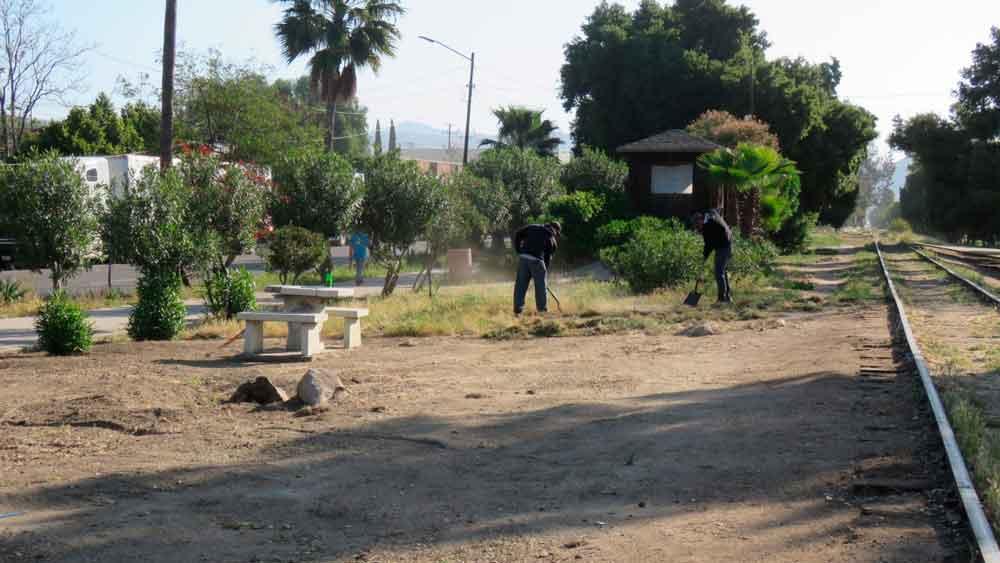 Ayuntamiento Realiza Labores de Embellecimiento de Calles y Áreas Verdes de la Ciudad