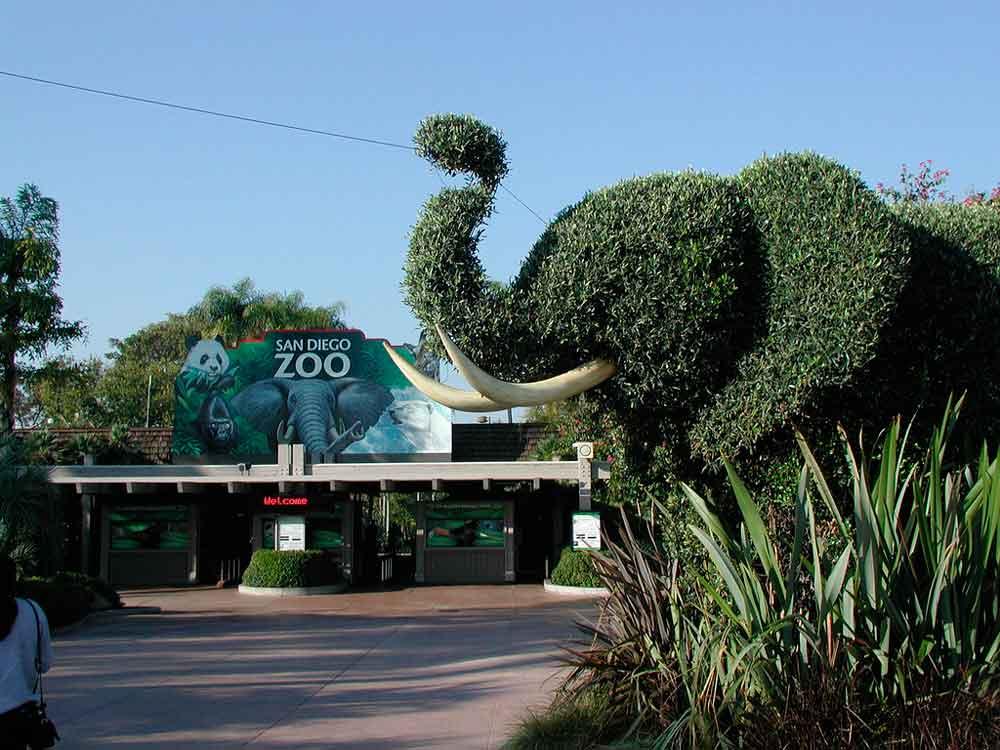 Detectan caso de rabia en Zoológico de San Diego
