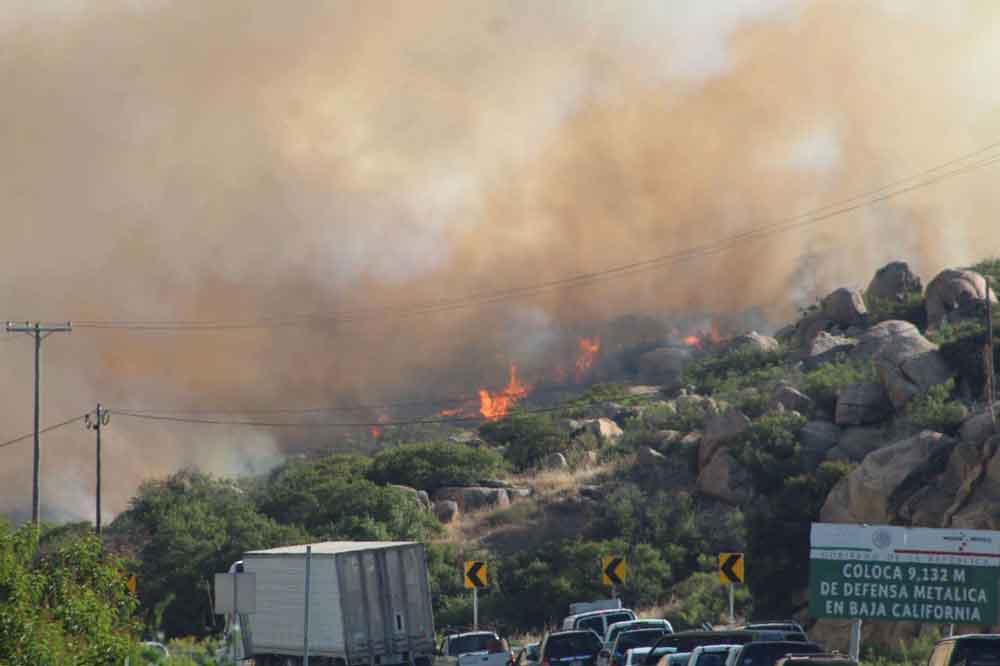Evitan bomberos daños mayores tras incendio forestal en Tecate