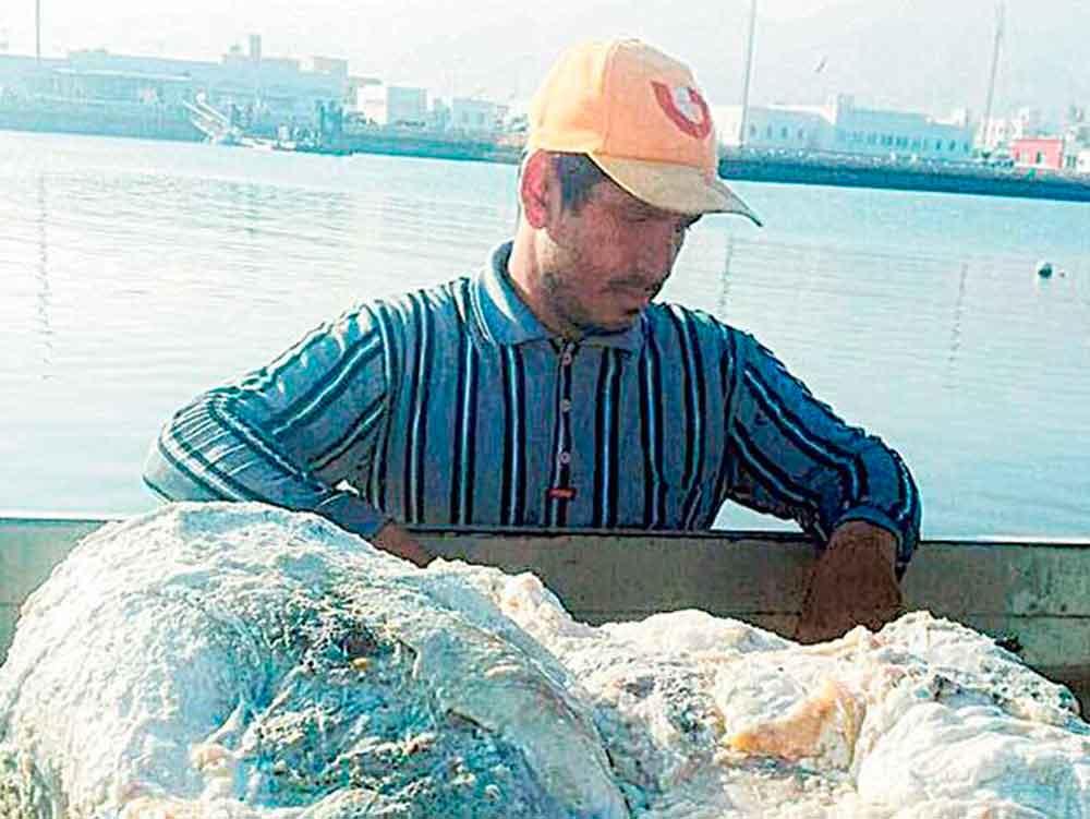 Pescador se convierte en millonario gracias al vómito de un cachalote