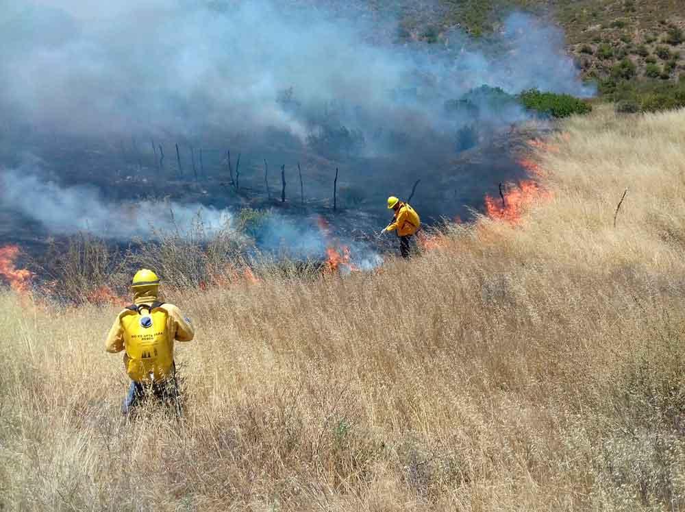 Alerta por altas temperaturas y riesgo de incendios forestales en Baja California