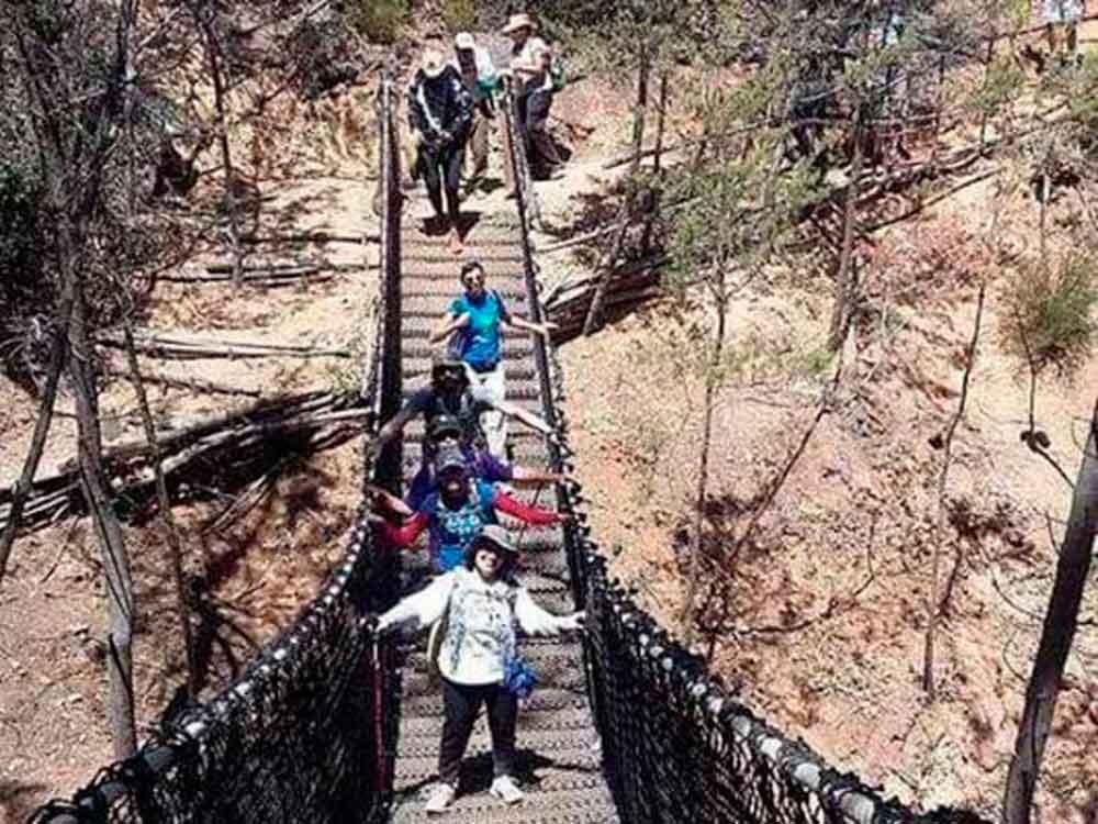 Senderistas caen de puente colgante en excursión en Ensenada