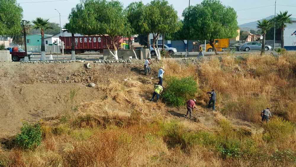 Obras Públicas intensifica trabajos de limpieza en el Río Tecate