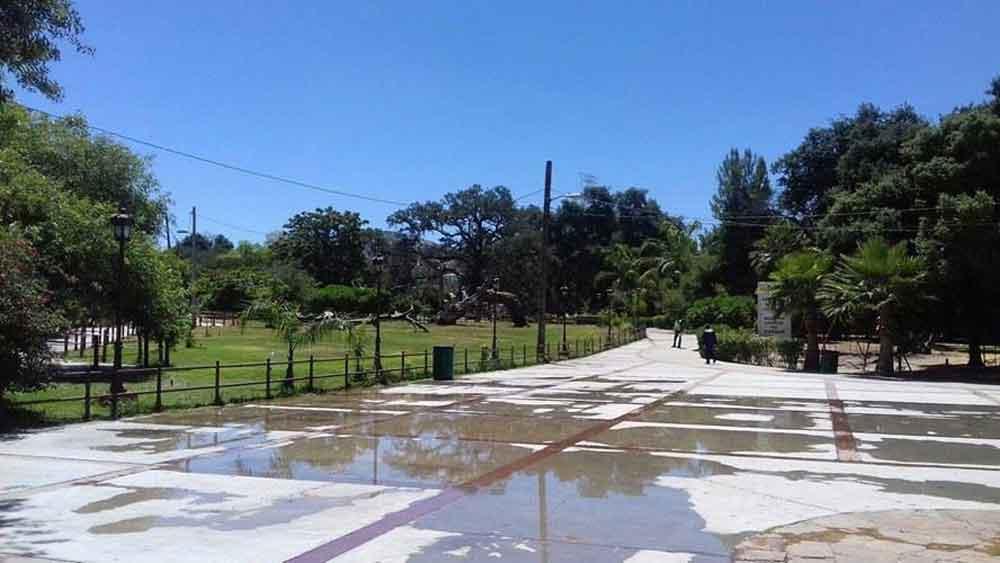 Entra en funcionamiento la Línea Morada en Tecate