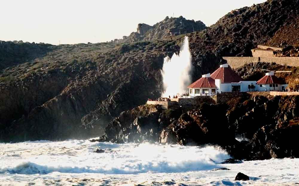 Visita Baja California, el estado con una explosión de vida