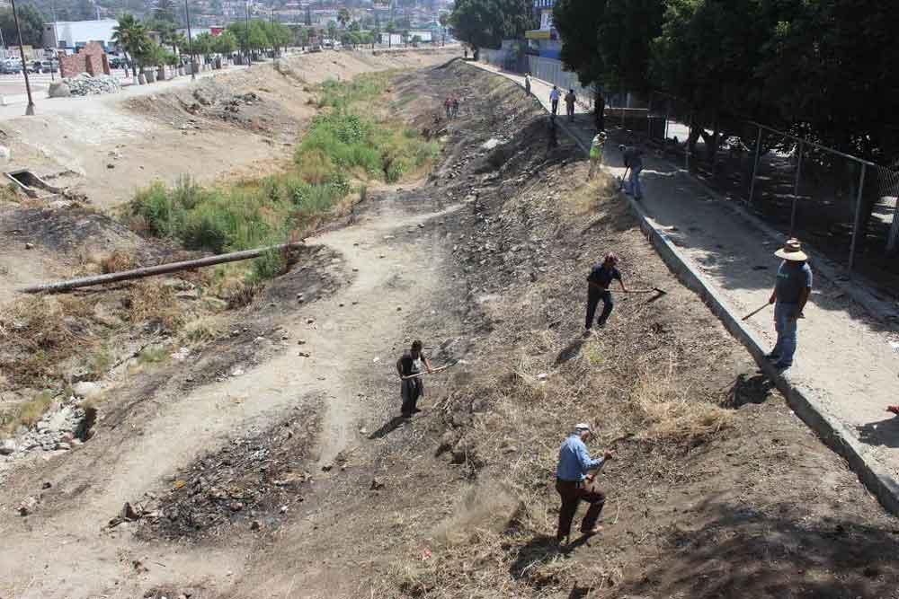 Intensifican labores de limpieza sobre el Río Tecate