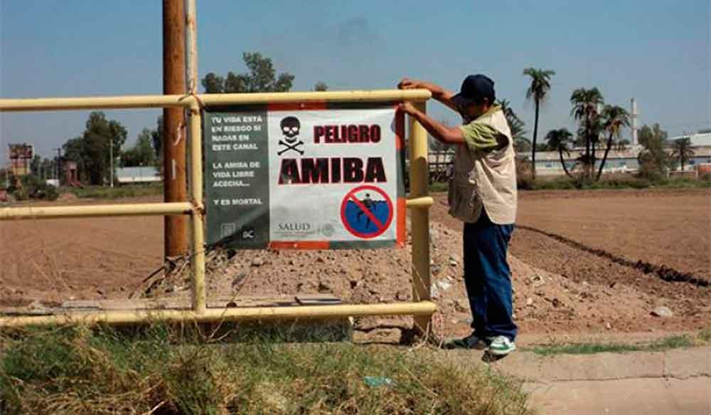 Alertan por amiba de vida libre en canales, pozos y agua estancada de Baja California