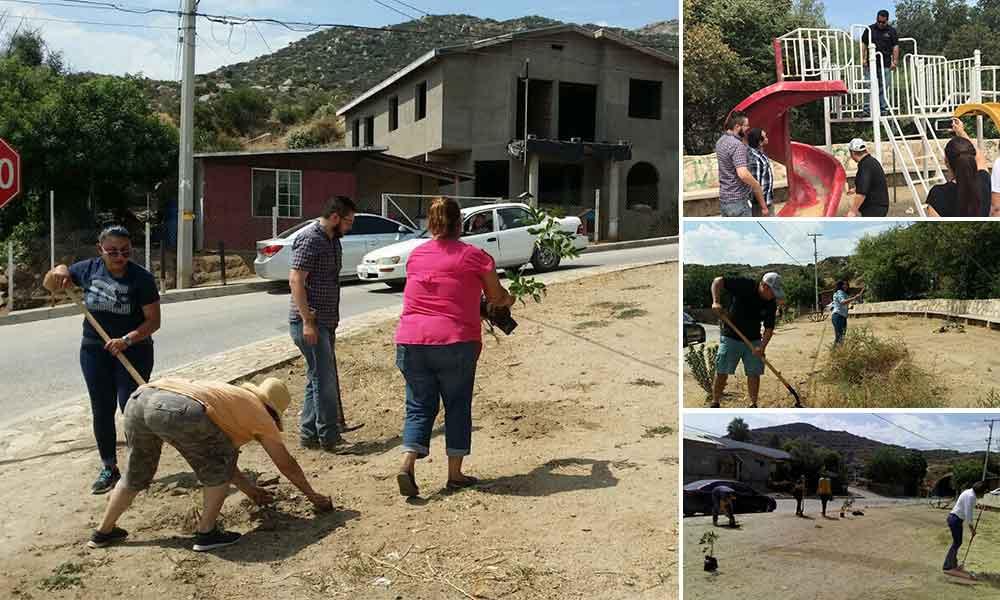 Benja Gómez realiza reforestación en la colonia Colosio en Tecate