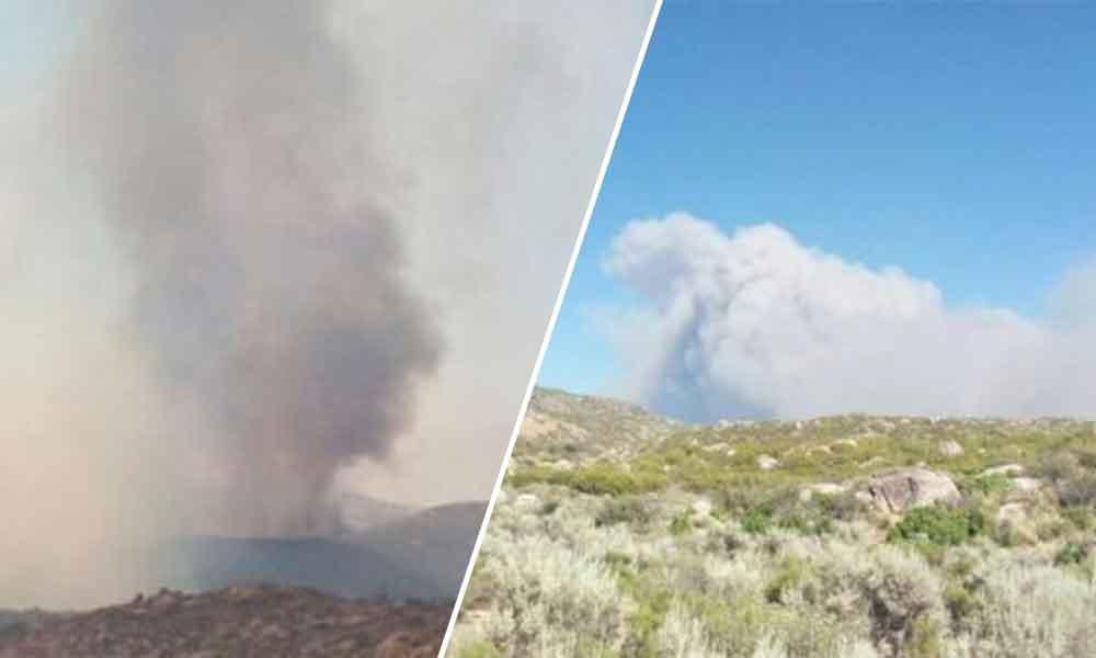 Incendio forestal consume 16 mil hectáreas en Ensenada