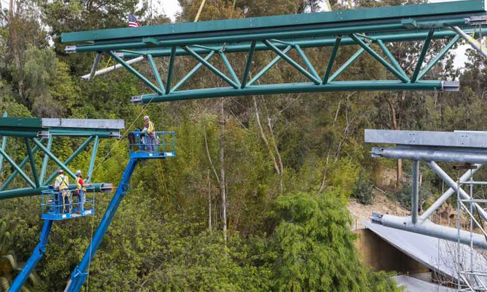 San Diego Zoo presenta su nuevo puente que recorrerá el parque