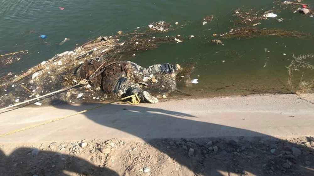 Localizan cuerpo de mujer flotando en canal de Mexicali