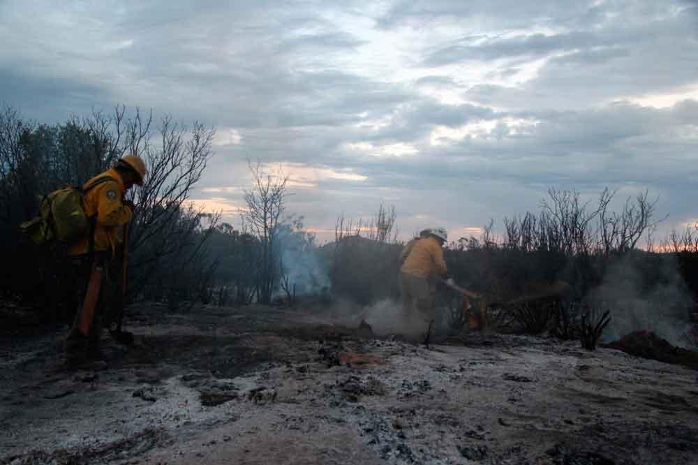 Incendio forestal en Ensenada reporta un 60% de control