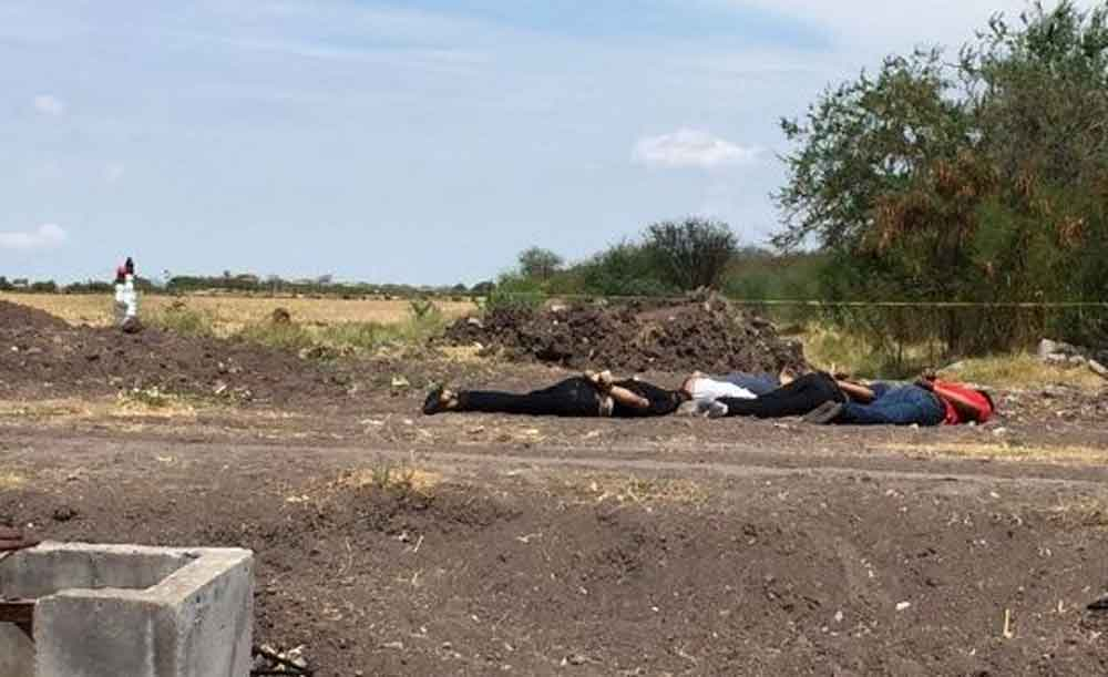 Localizan a cuatro jóvenes asesinados a balazos