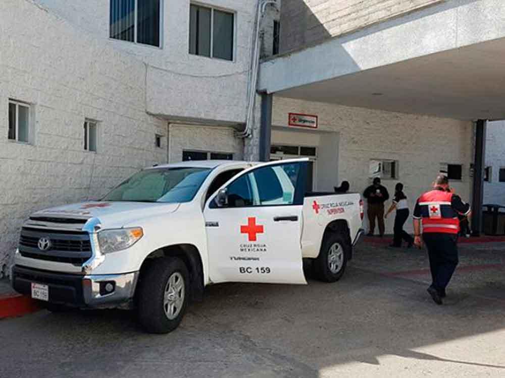 Pitbull ataca a niña de 2 años en Tijuana; le mordió la cara