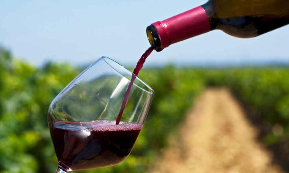 Aumenta consumo de vino en Baja California: IMERK