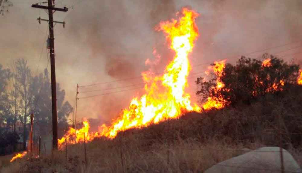 Combaten 91 incendios en Tijuana por onda de calor