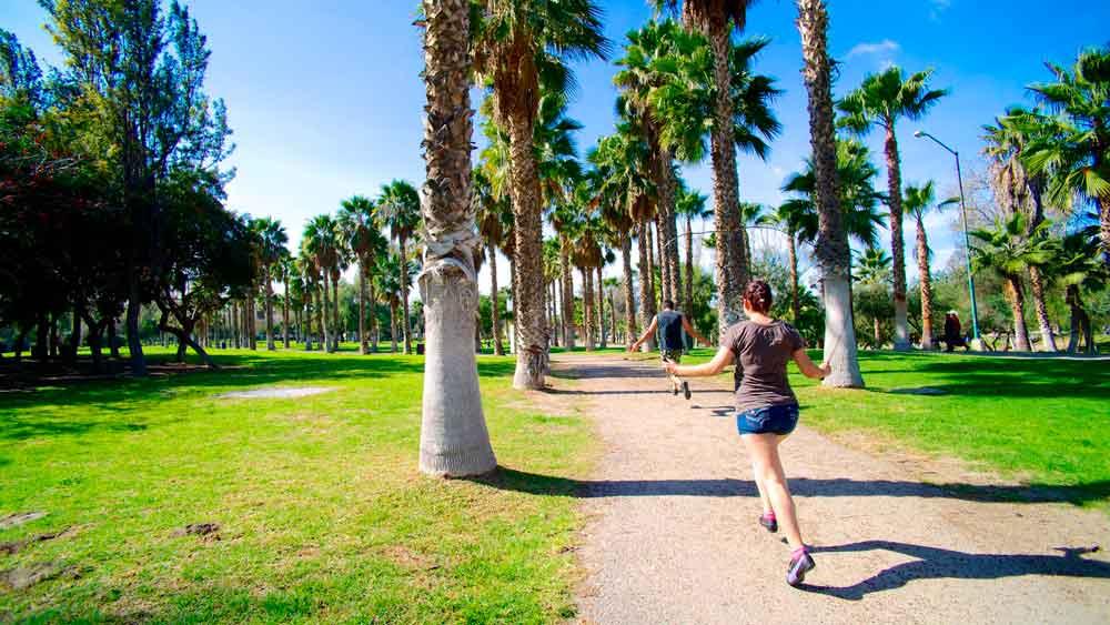 Promueven a Tijuana como destino de estilo de vida saludable
