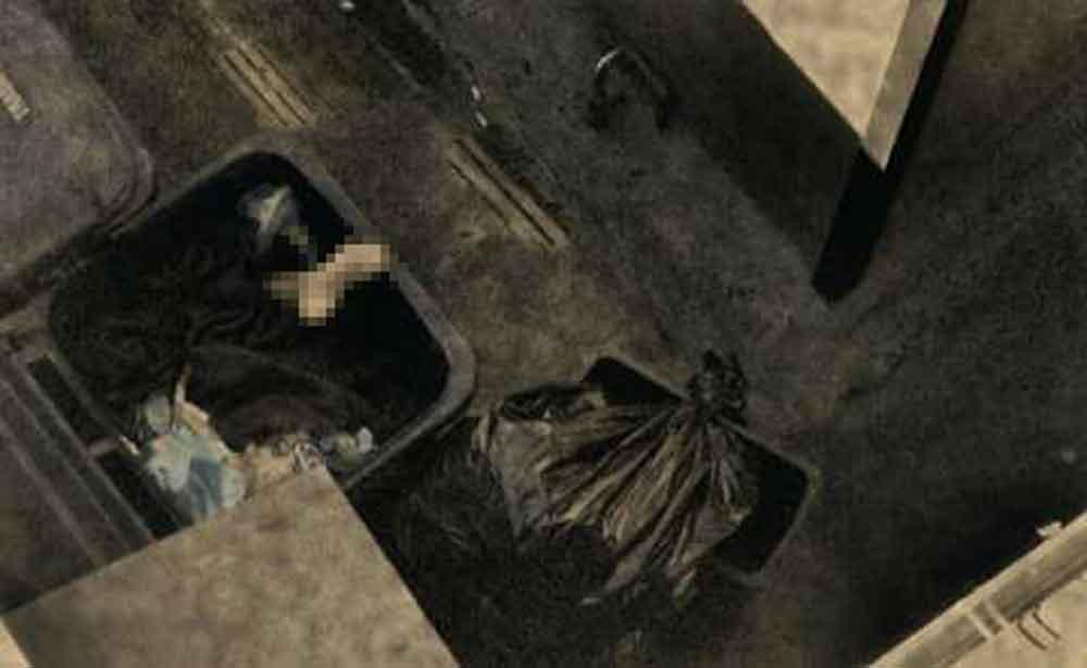 Identifican a mujer encontrada en contenedor de basura en Ensenada