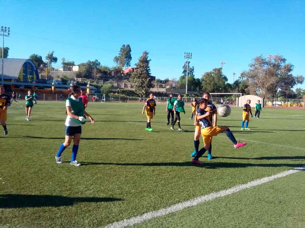 Realiza SEE Tecate municipal de futbol
