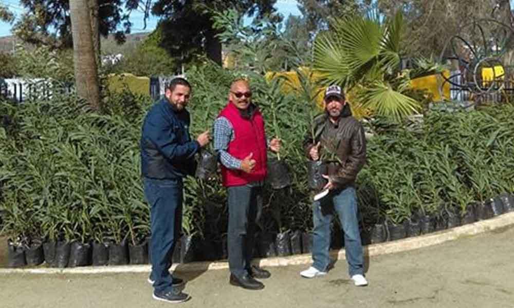 Imdete iniciará campaña de reforestación en el municipio