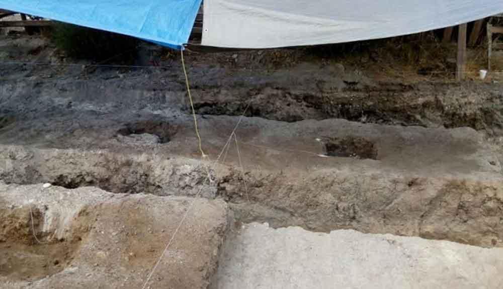 Localizan 250 kilos más de restos óseos en terreno de Tijuana