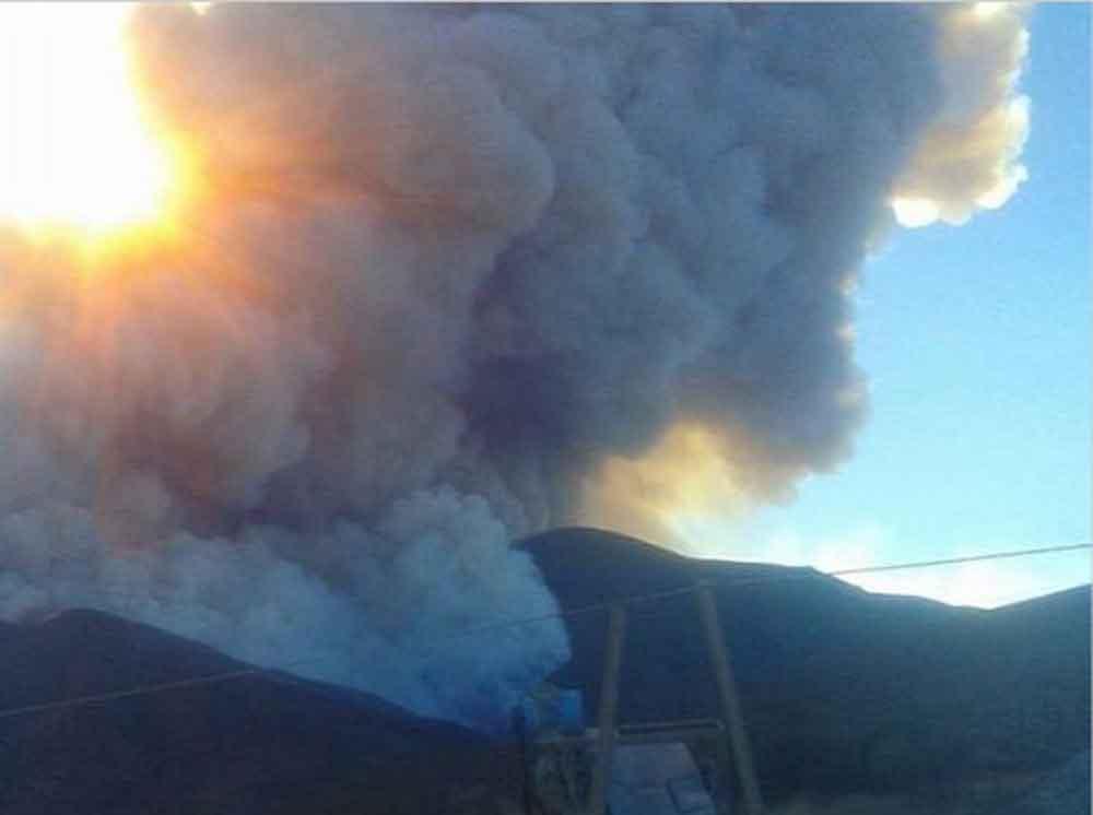 Nuevos datos sobre el incendio en Valle de las Palmas