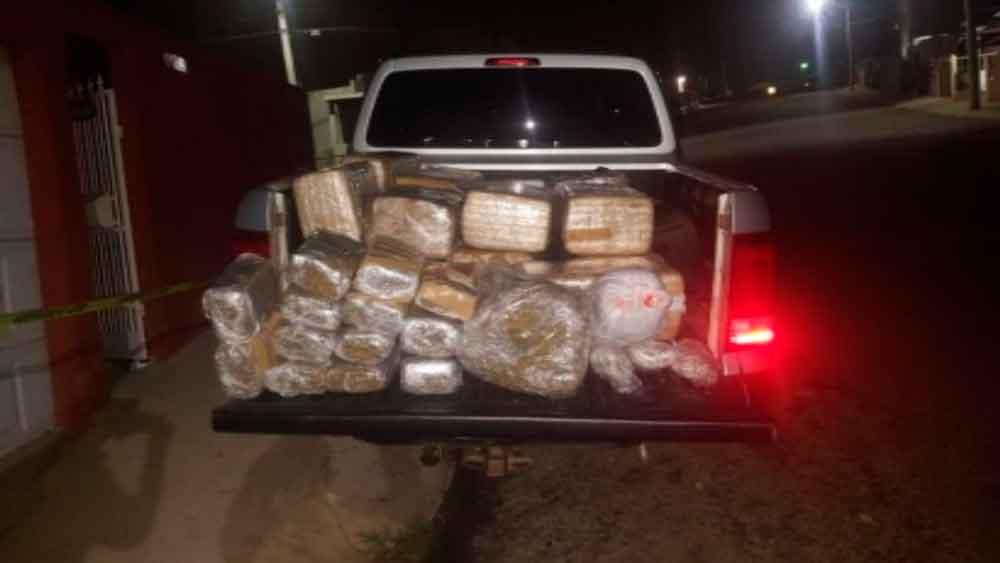 Localizan más de 196 kilos de marihuana tras cateo en Ensenada