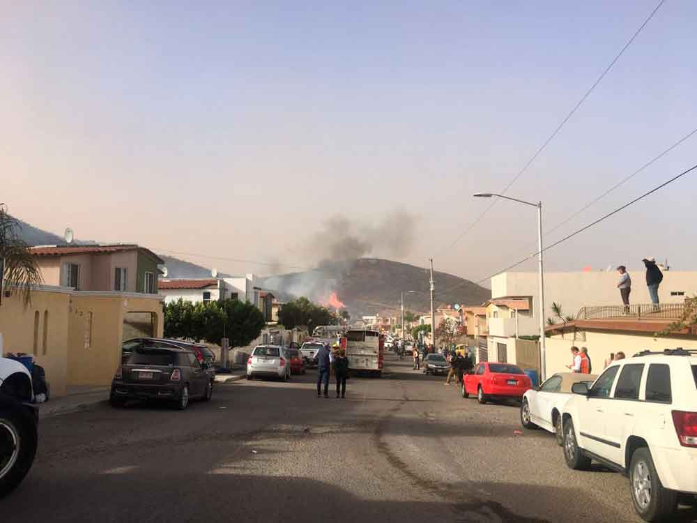 Trabajan en Bomberos en incendio forestal en Ensenada