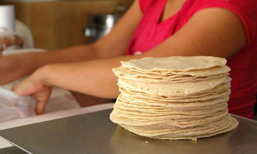 El kilo de tortilla podría subir hasta los 17 pesos