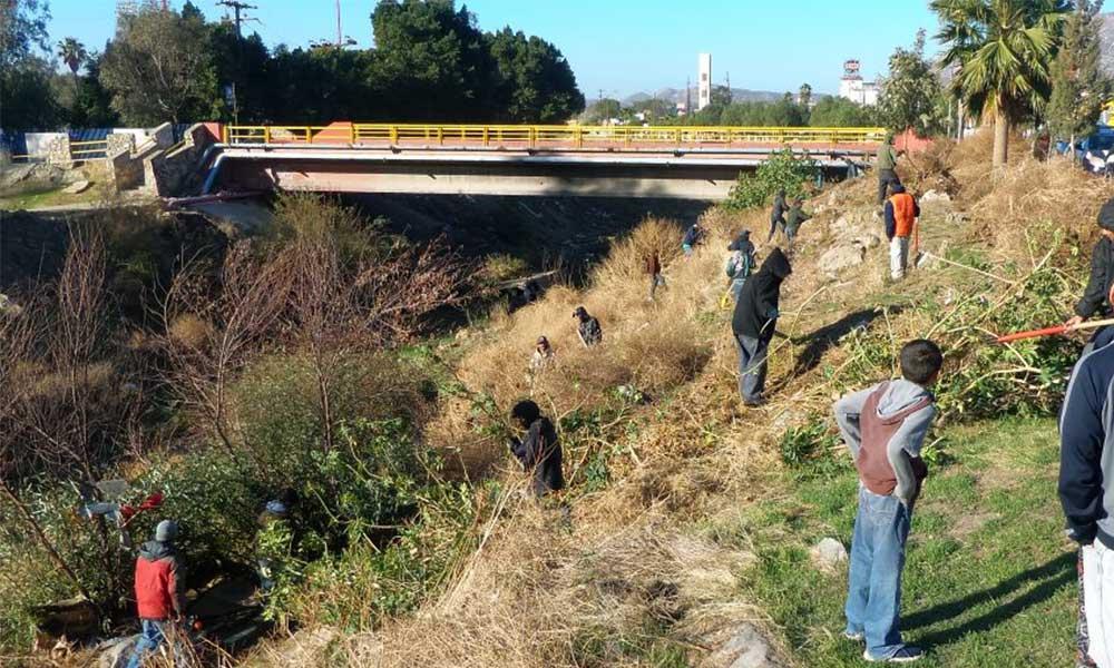 Continúa Servicio Comunitario, infractores cumplen cuatro horas diarias limpiando el Río Tecate