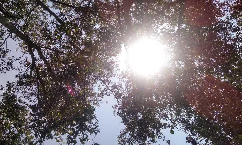 Sol radiante para mañana jueves en Baja California