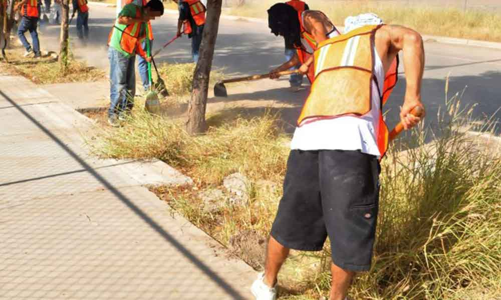 Infractores podrán cumplir horas de arresto con servicio comunitario en Tecate