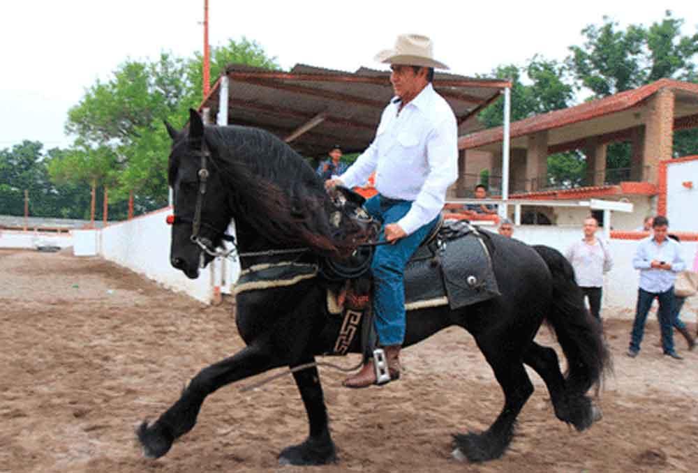 Mi caballo come menos que mi vieja, justifica 'El Bronco'