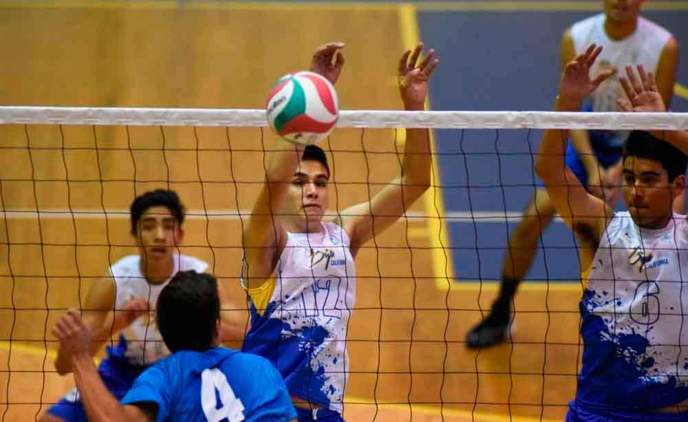 Siete equipos representarán a Tecate en Olimpiada Estatal de Voleibol