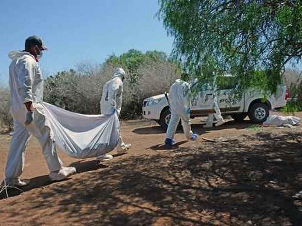 Van 29 cadáveres encontrados en fosas de Nayarit
