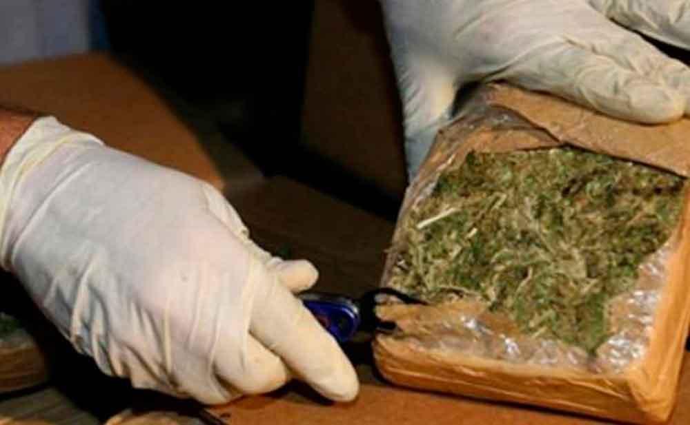 Ahora el tráfico de marihuana es de EUA a Tijuana