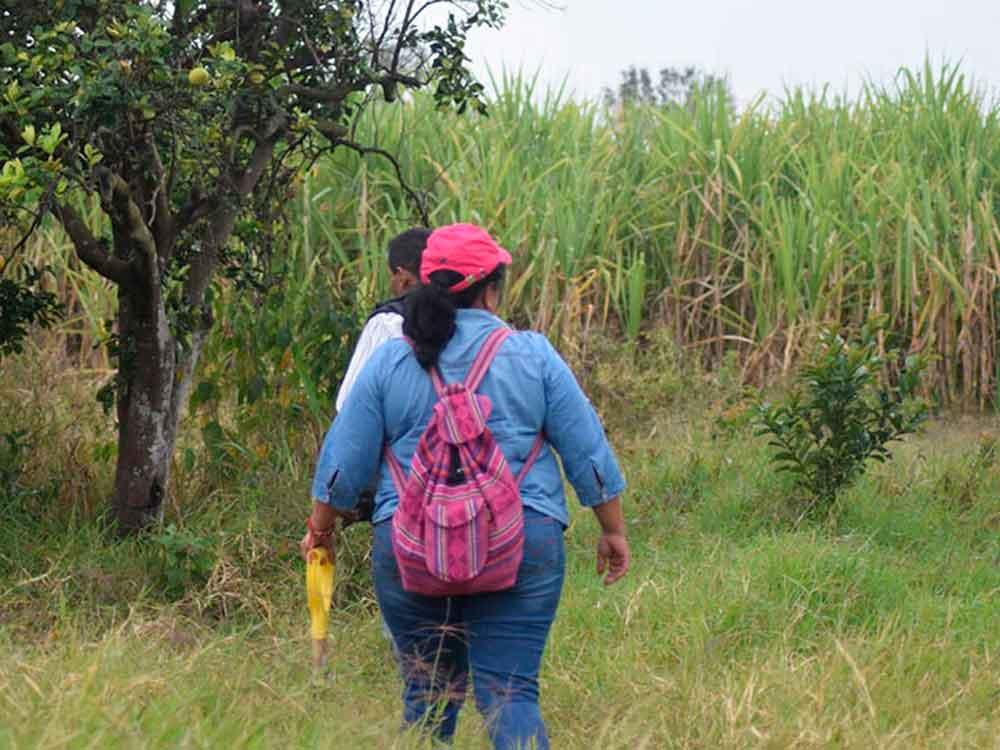 Mujer camina por horas en la sierra; busca a su hija en fosas